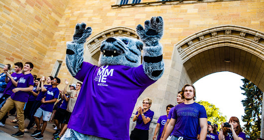 Tommie Traditions: the Power of the Tommie Network | St. Thomas Newsroom