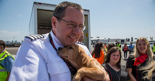 Southwest Airlines Fills Cabin With Pets Orphaned During Houston Storm In Dramatic Rescue