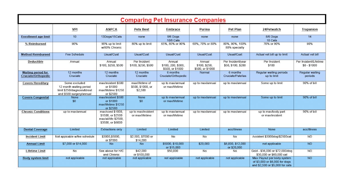 Insurance Company: Health Insurance Company Comparison Charts