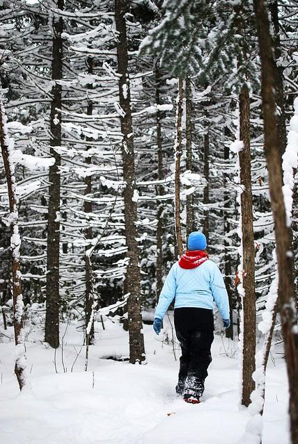 Sarah walking through pines.