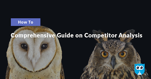 Comprehensive Guide on Competitor Analysis (with Ecommerce Example)