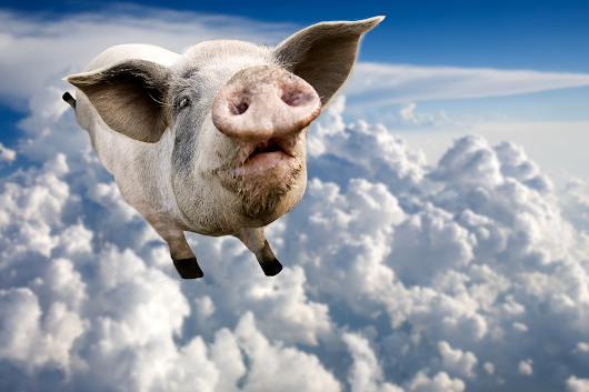 That Time a Flying Pig Grounded Every Plane at London's Heathrow Airport
