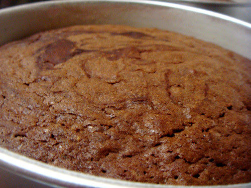 Baked Chocolate Blackout Cake