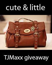 kileen cute and little TJMaxx Vieta Lucille satchel giveaway