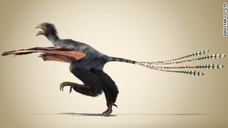 Bizarre winged dinosaur discovered in China - CNN.com