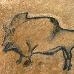 VIII. Bisonte hembra