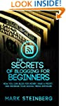 The Secrets of Blogging for beginners...