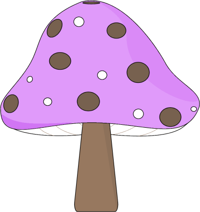 Purple and Brown Mushroom