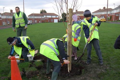 Washingwell School tree planting Dev 09 no 15