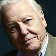 Attenborough: endless growth 'lunacy'