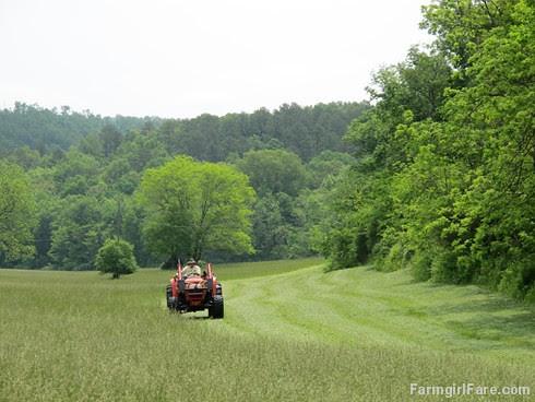 (28-9) Cutting the first hay of the season - FarmgirlFare.com