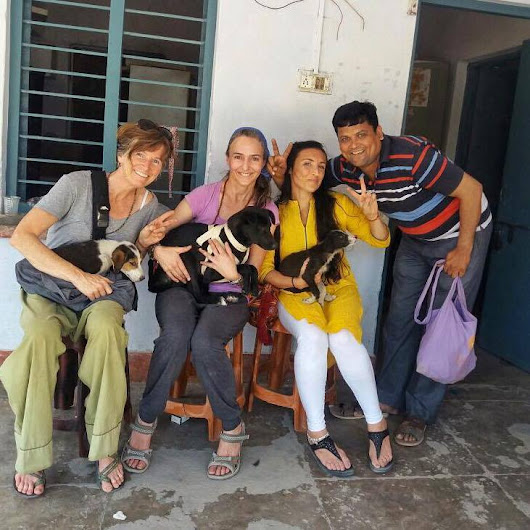 Click here to support Freedom Fields  Helping Rishikesh organized by Emmanuelle Brown