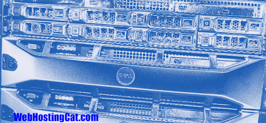 When is Managed Web Hosting Really Managed? | Web Hosting Cat