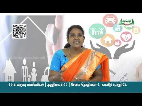11th Commerce சேவை தொழில்கள்- 1 காப்பீடு  அத்தியாயம் 3 பகுதி 11  Kalvi TV