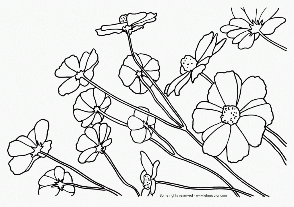 Nature Coloring Pages For Adults - Coloring Home