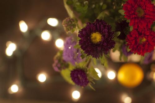 flowers, lights, satsuma