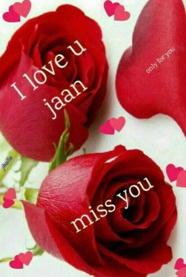 I Love You Janu Image With I Lv U Sweetheart Photo And Janu Sms Pics