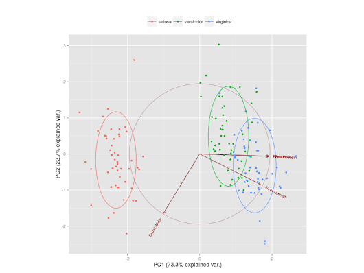 Computing and visualizing PCA in R