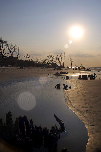 Driftwood Beach Sunset by erickpineda527