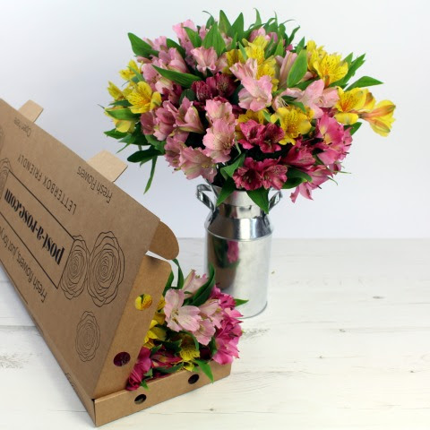 Bouquet Letterbox Flowers Delivered Free Uk Delivery Flowers Through The Letterbox 20 30