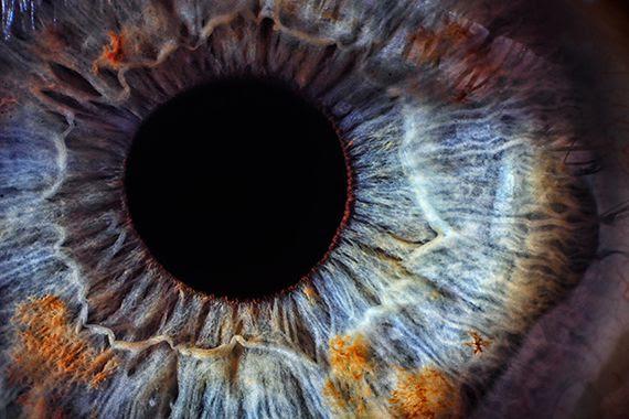 L'Univers Connecté (conférence EN FRANCAIS de Nassim Haramein)... et autres liens intéressants