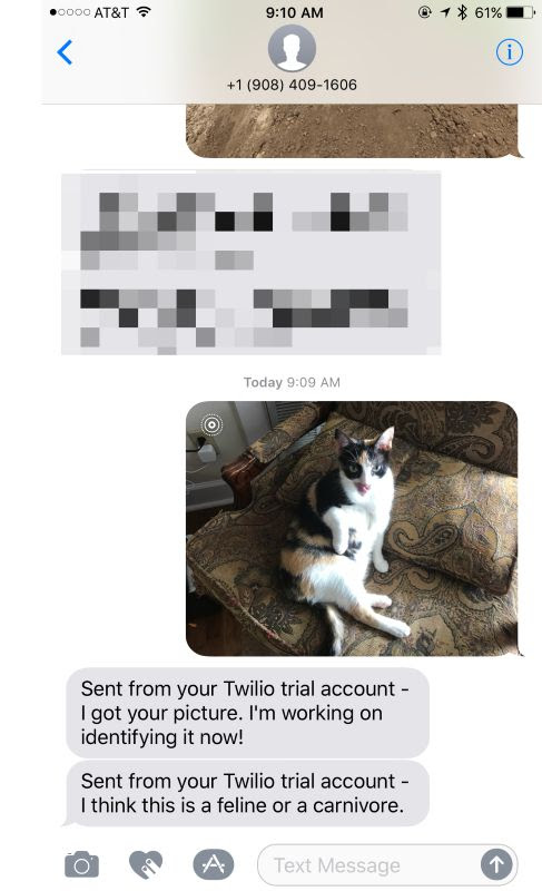 Handling SMS with OpenWhisk, IBM Watson, and Twilio