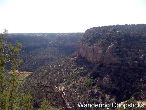 15 Petroglyph Point Trail - Mesa Verde National Park - Colorado 5