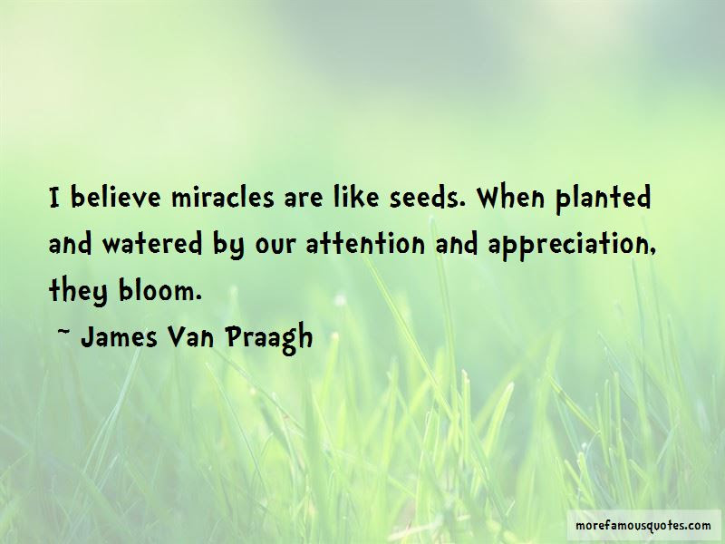 I Do Believe In Miracles Quotes Top 40 Quotes About I Do Believe In
