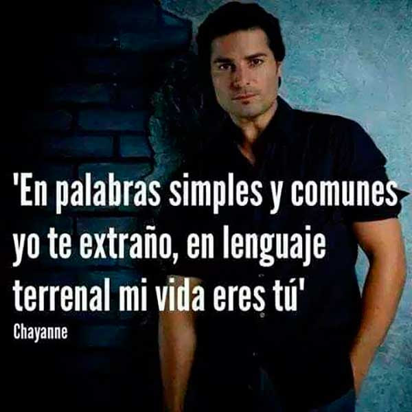 Canciones Romanticas De Chayanne Unifeed Club