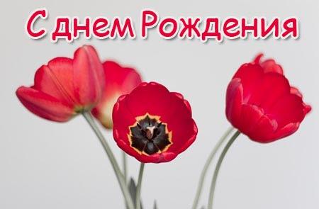 Gratulieren Zum Geburtstag Auf Russisch