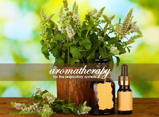 Aromatherapy for the Respiratory System