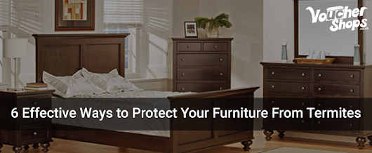 6 Effective Ways to Protect Your Furniture From Termites - Blog - Vouchershops.co.uk