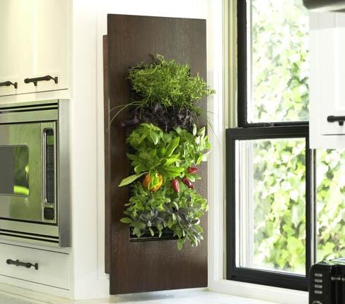 Indoor Vertical Vegetable Garden