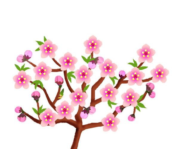 ピグライフ攻略ぅ 桃の花 イラスト無料 桃の花イラスト画像ひな祭り