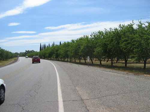 Orchards and Cemetery