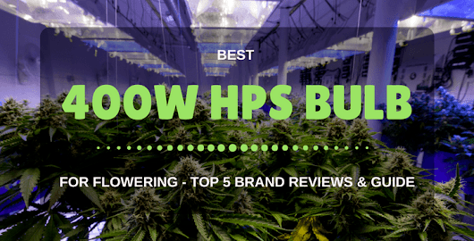The Best 400W HPS Bulb For Flowering Reviews & Guide