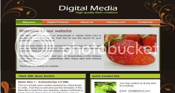 Flash Digital Media Web2.0 Template