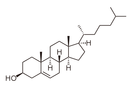 File:Cholesterol.svg