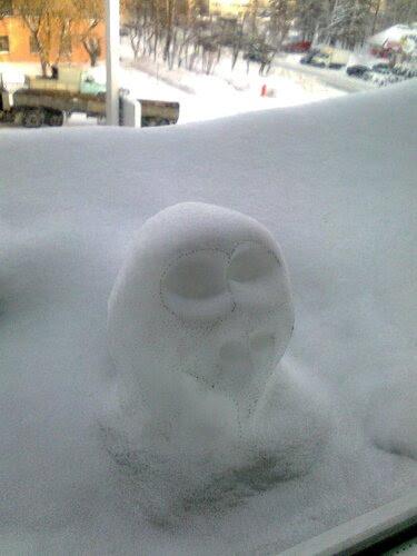 Снежное нечто