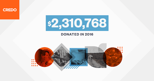 The final results of our 2016 donations program are in