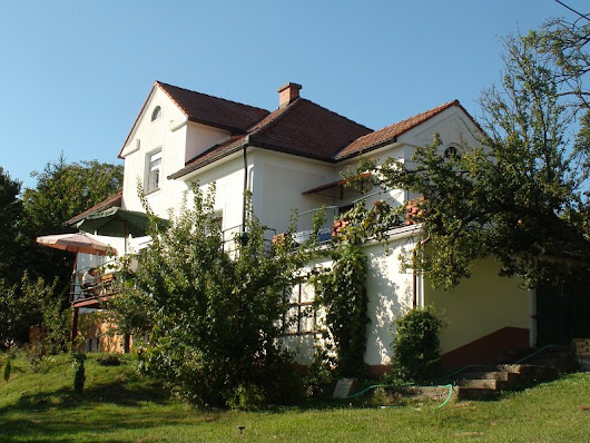 TPSVT5NSV-A magnificient and renovated austro-hungarian villa for sale