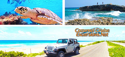 Cozumel Excursions in Cozumel 75% OFF BEST Cozumel Tours of Cozumel Cruise Excursions