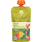 Peter Rabbit Organics Fruit and Vegetable Snack, Kale/Broccoli/Mango - 4.4 oz pouch