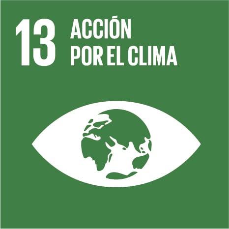 S_SDG_Icons-01-13