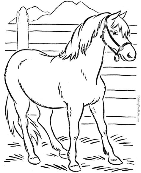 print coloring pages  printable horse coloring pages