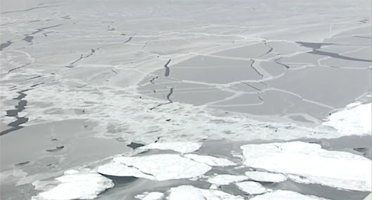 How thick is sea ice? | FrontierScientists