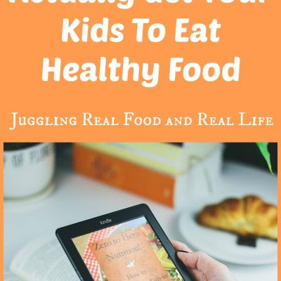 Zero To Hero Nutrition E-Book: How To Actually Get Your Kids To Eat Healthy Food - Juggling Real Food and Real Life