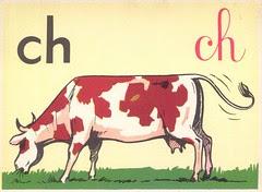 ch vache