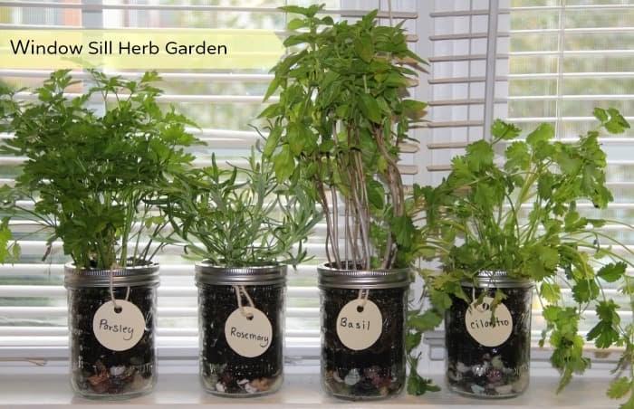 Our Southern Style: DIY Window Sill Herb Garden - wurld