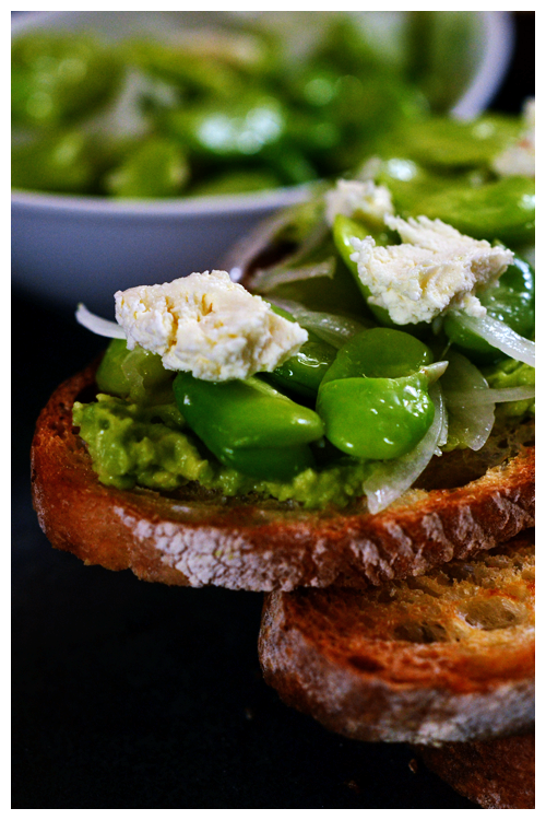 broad bean and avocado bruschetta© by Haalo